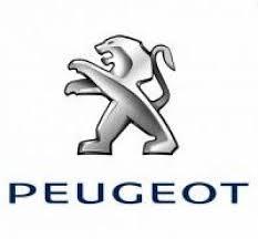 Borne de recharge pour Peugeot